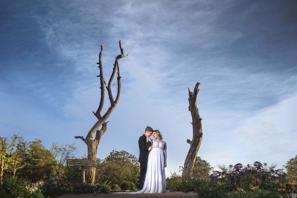 Darrell Fraser Valverde Wedding Photographer